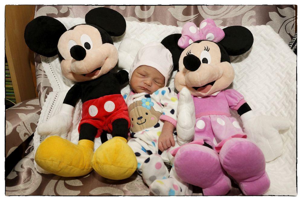 Fotografii nou nascuti